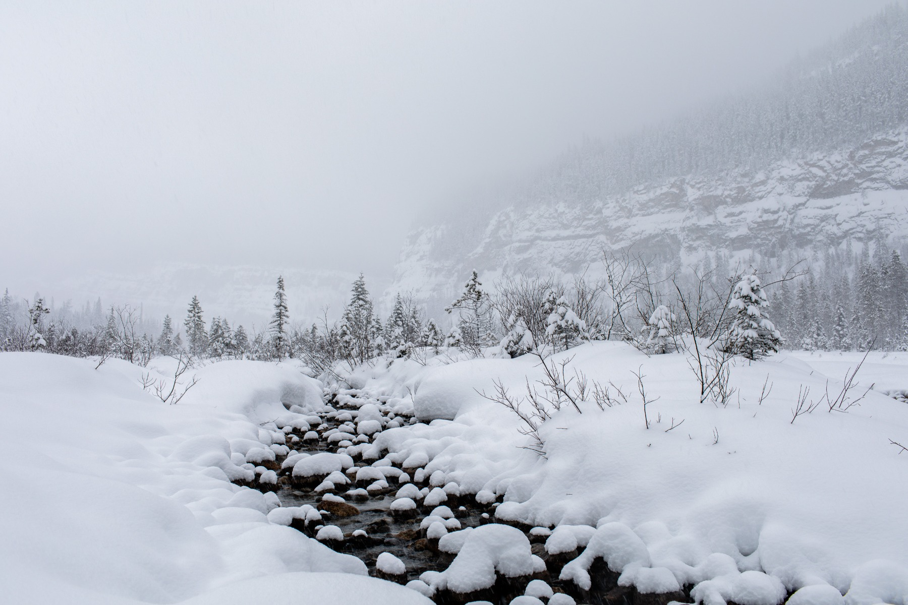 Snow is piled high on rocks and the surrounding ground of a stream with a thick fog obscuring the mountain view.