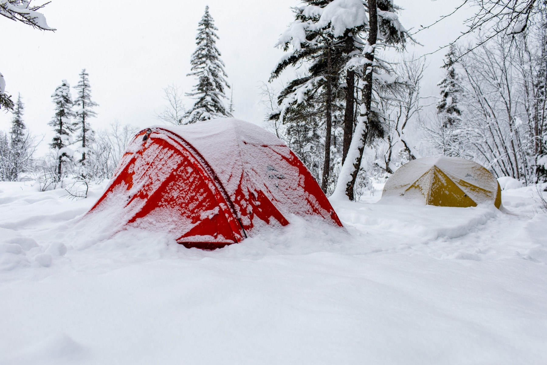 Two bright coloured tents sit at a campsite nearly covered in snow.