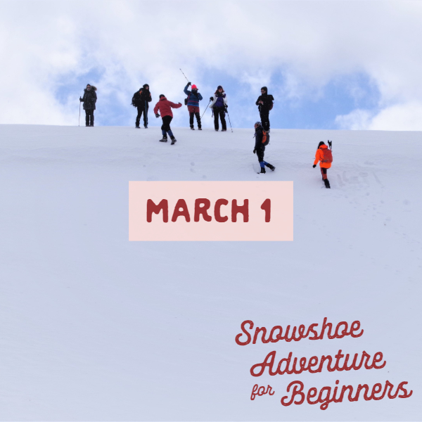 Beginner Friendly Snowshoe Adventure