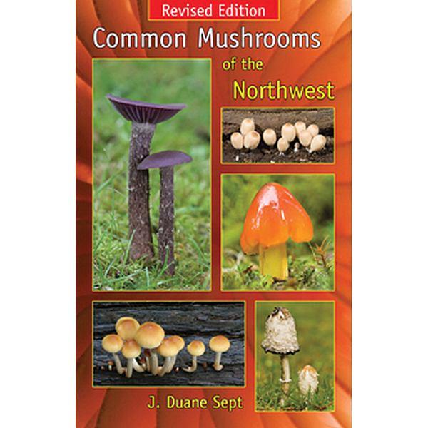 Common Mushrooms of the North