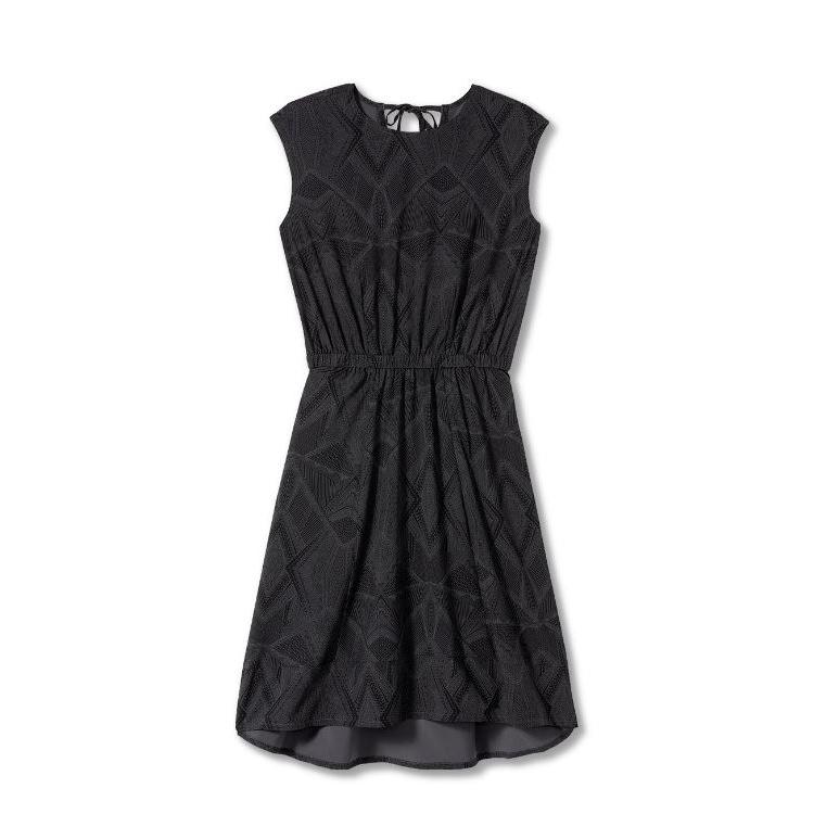 Spotless Traveler Dress - Women's